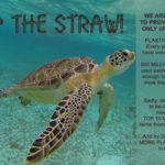"Every day is Earth Day!  ""Skip the Straw"", Oyster Recycling Project, Adopt-A-Beach…and more!  Blue Water Grill is committed to our environment."