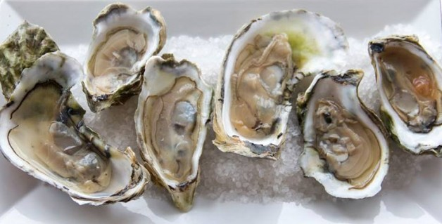Starting Labor Day:  Oyster Happy Hour!  4-6 PM Daily